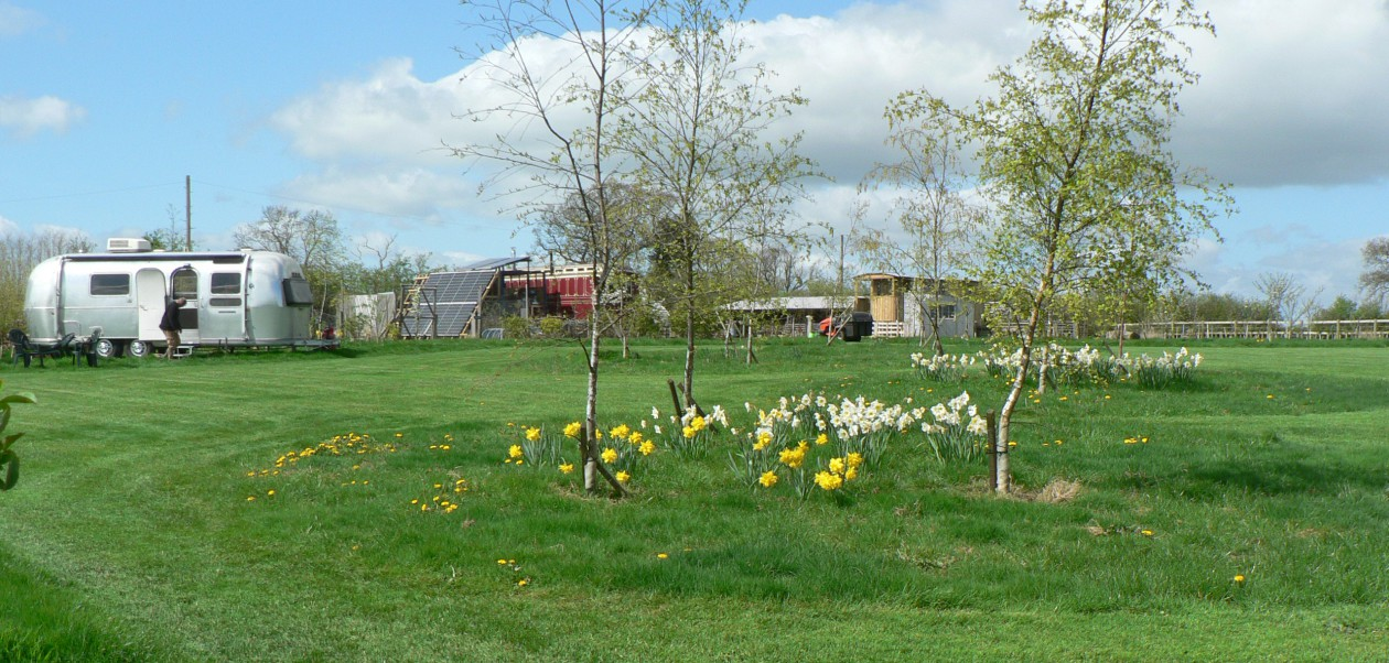 Home:ACORN PONDS GLAMPING  SITE :   An inspiring place to stay! Self sufficient! Vintage vehicles! A working Smallholding